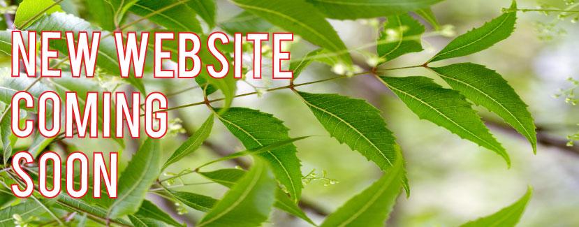 neem-website-coming-soon